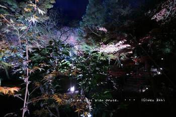 マイルで行く京都旅Next 2020(78).jpg