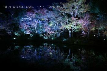 マイルで行く京都旅Next 2020(81).jpg