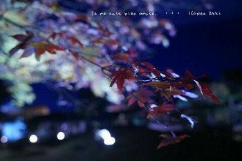 マイルで行く京都旅Next 2020(83).jpg