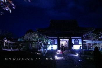 マイルで行く京都旅Next 2020(84).jpg