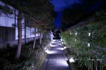 マイルで行く京都旅Next 2020(85).jpg