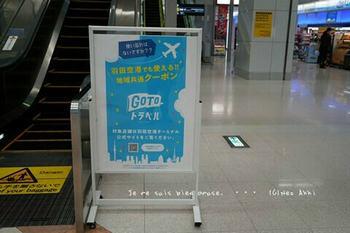 マイルで行く京都旅Next 2020(9).jpg