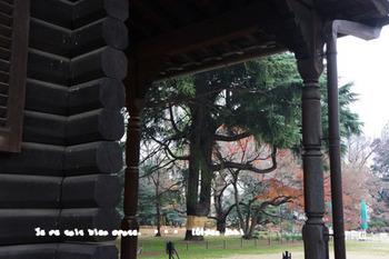 旧岩崎邸庭園(29).jpg