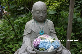 明月院の紫陽花2015(10).jpg