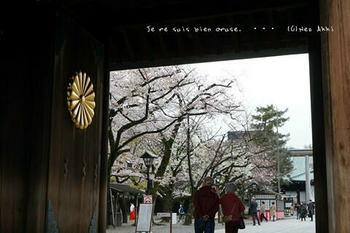 東京の桜2020(14).jpg