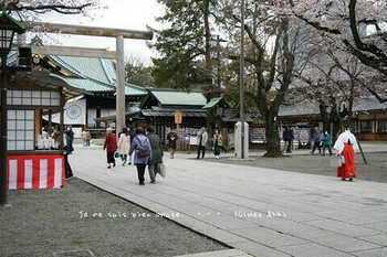 東京の桜2020(23).jpg