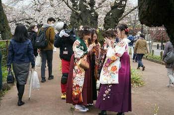 東京の桜2020(32).jpg