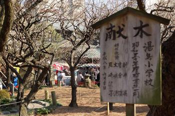 梅祭り(11).jpg