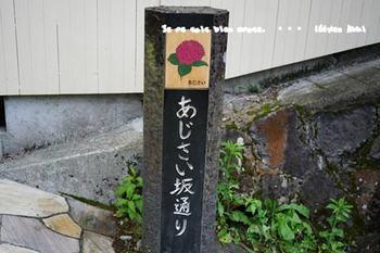 箱根旅2017(52).jpg