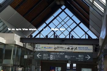 軽井沢へ(15).jpg