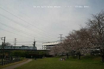 近くの桜 2021(22).jpg