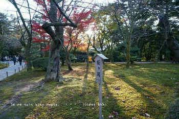 金沢へ(71).jpg