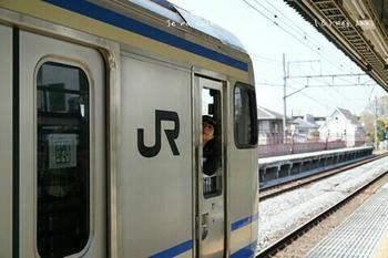 鎌倉の桜2019(1).jpg