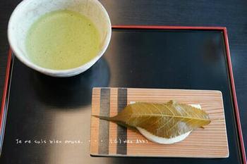 鎌倉の桜2019(36).jpg