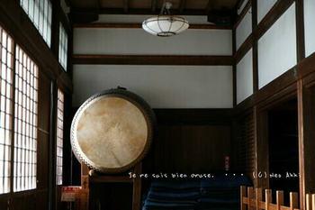 鎌倉の桜2019(51).jpg