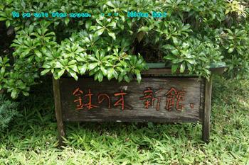 鎌倉紫陽花(41).jpg