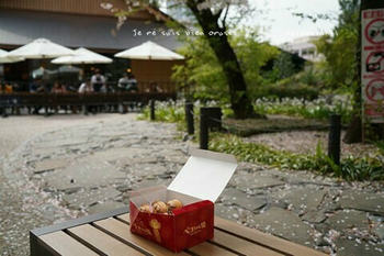 靖国神社の桜 2021(4).jpg