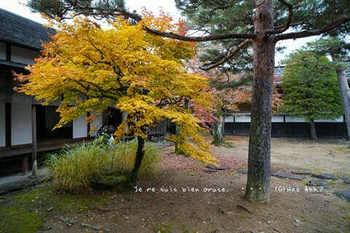 高山陣屋(13).jpg