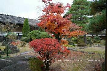 高山陣屋(14).jpg